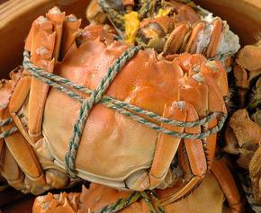 上海蟹 姿蒸し.jpgのサムネイル画像