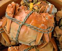 上海蟹 姿蒸し 200.jpgのサムネイル画像