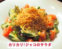 カリカリ!ジャコのサラダ.jpg