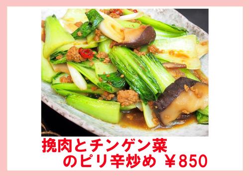 挽肉とチンゲン菜のピリ辛炒め.jpg